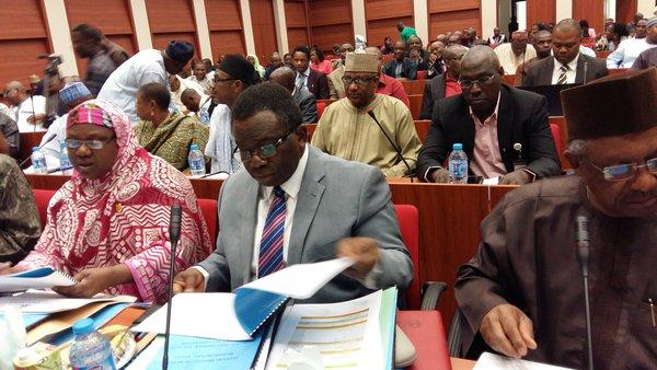 Health Minister Defends Budget on Diaspora Matters
