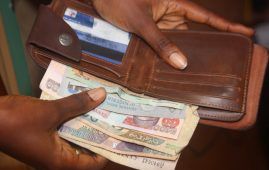 Nigerian consumer wallets