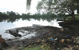 Ogoniland Clean-Up