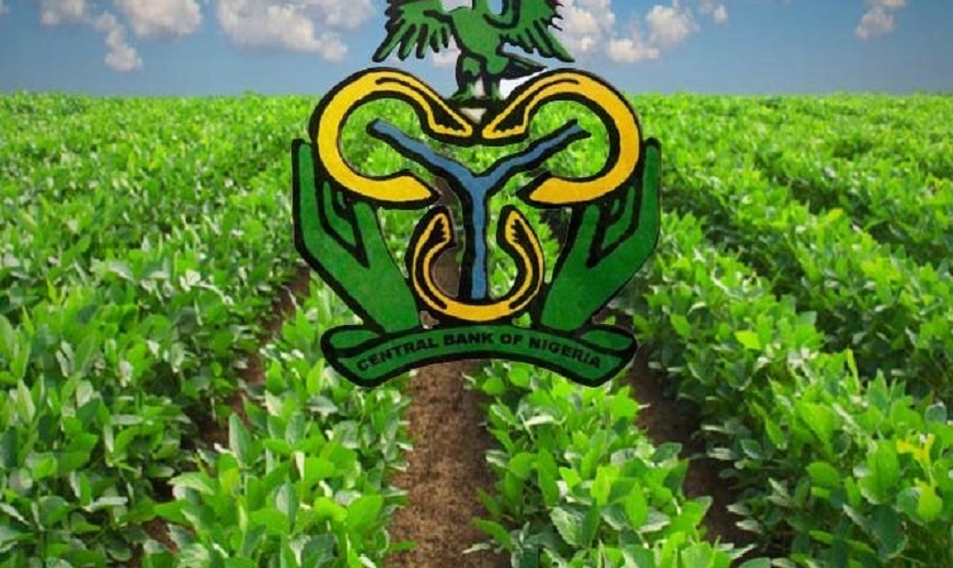 CBN Relies on Manufacturing, Agric Sectors to Jump-Start Economy   Business  Post Nigeria