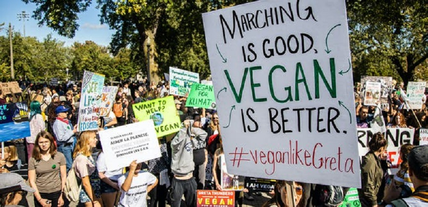 political protest Populism
