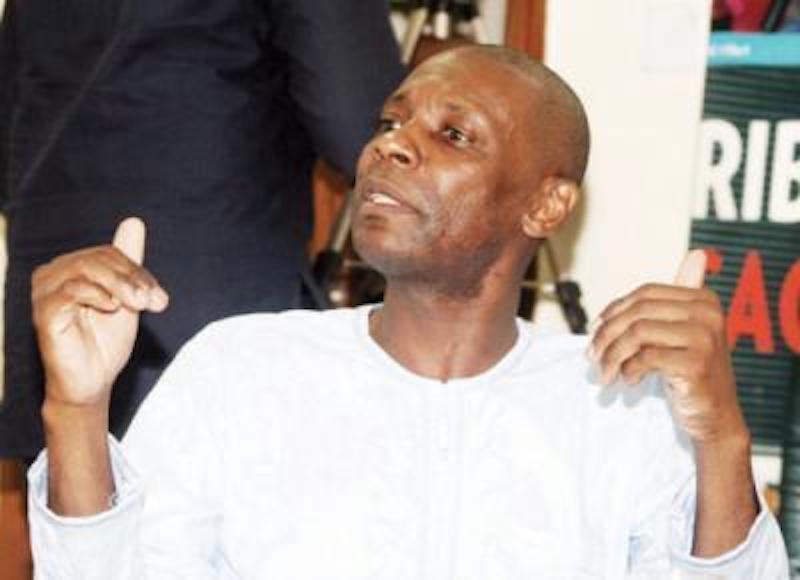 Chike-Obi Fidelity Bank Chairman