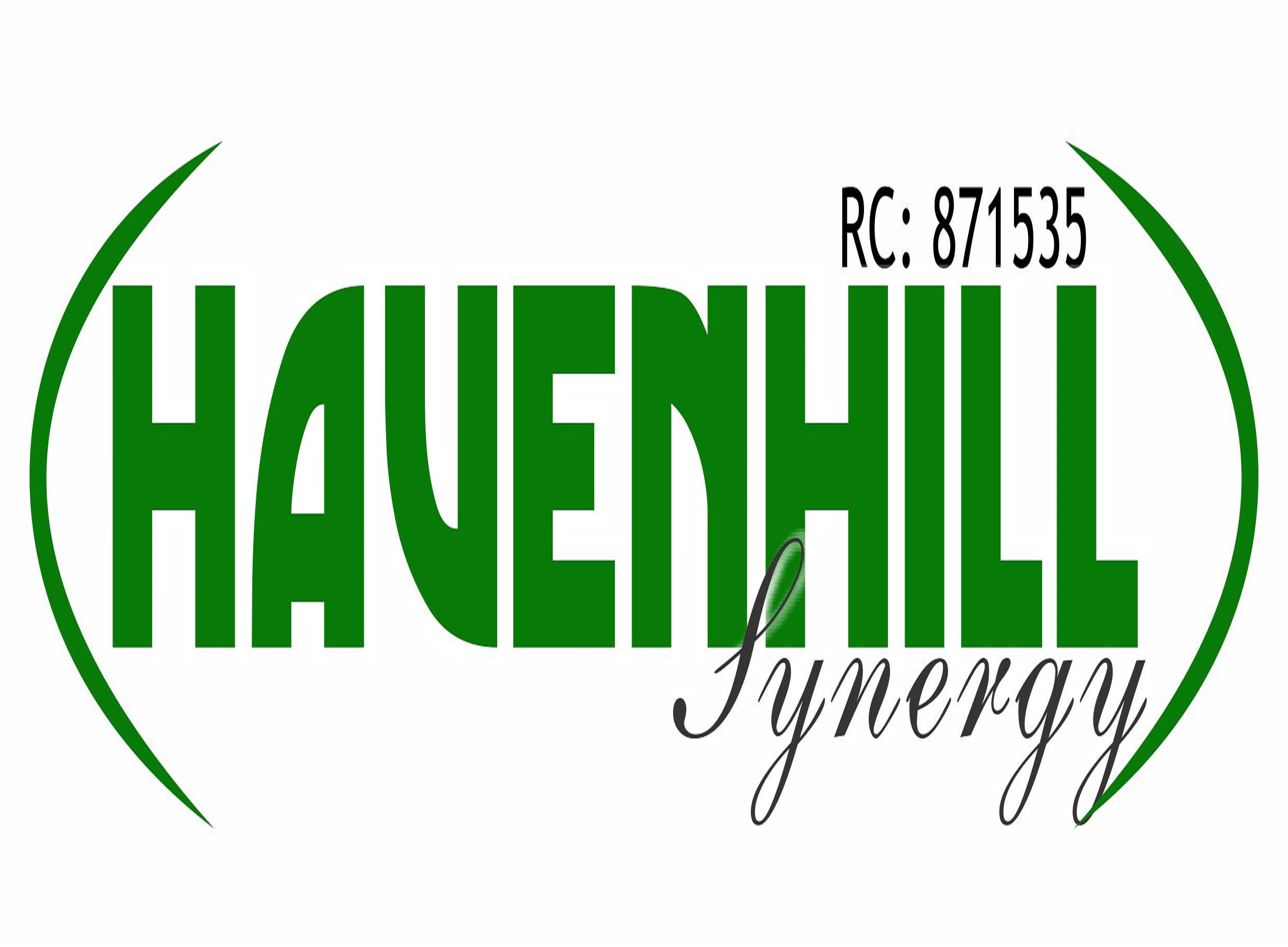 Havenhill Synergy Limited