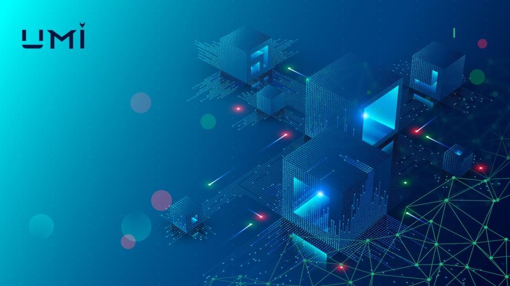 Umi Blockchain Ecosystem