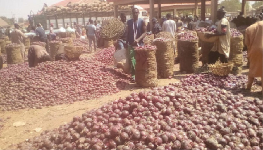 onions at Lagos Markets