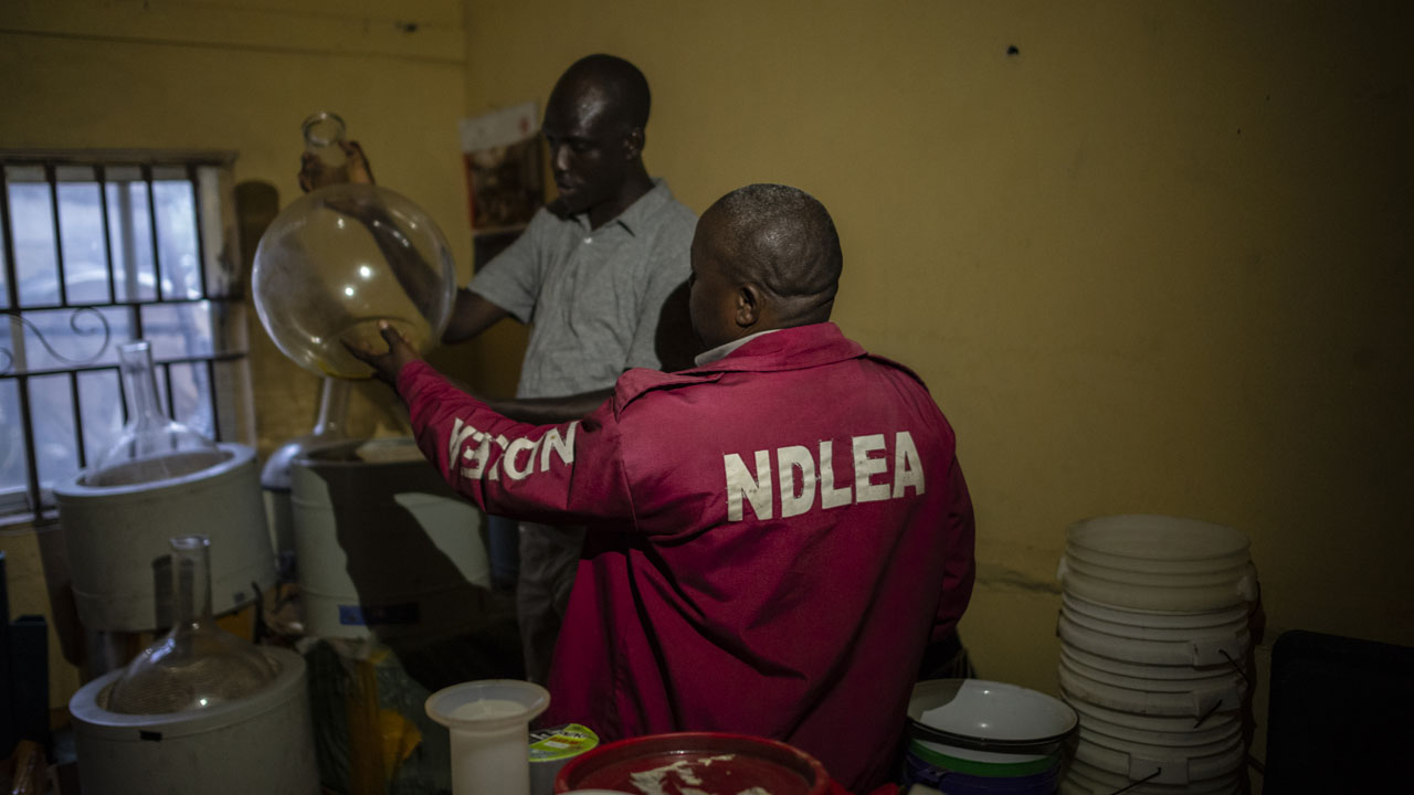 NDLEA screening