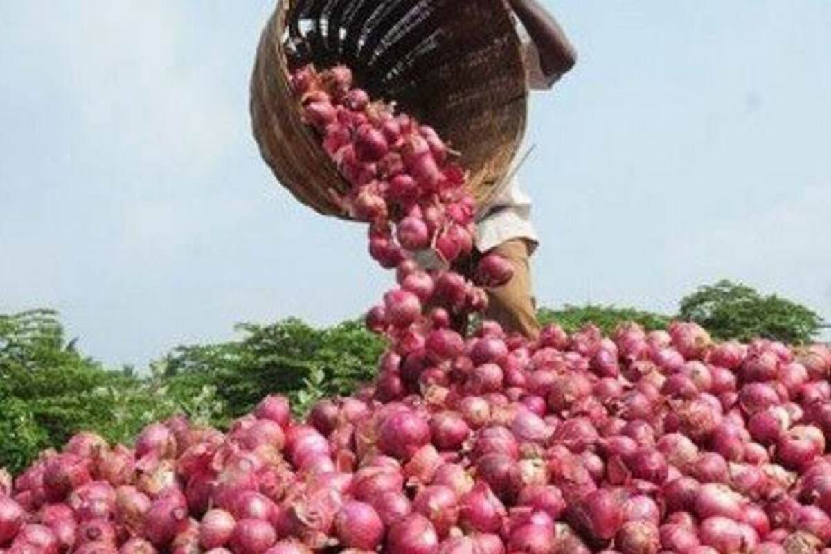 Onions Can Attract Foreign Investors to Nigeria—Customs