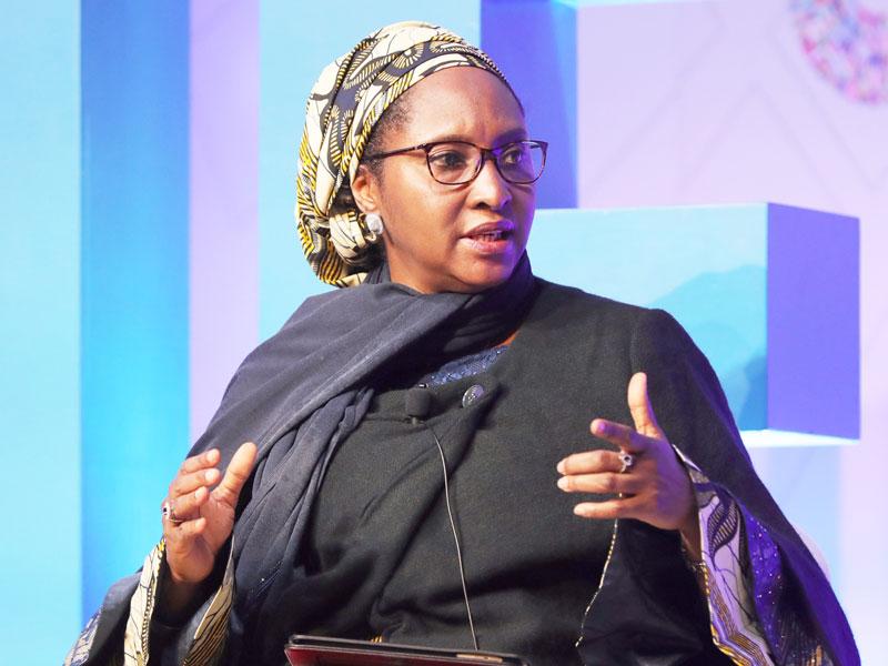 zainab ahmed economic model
