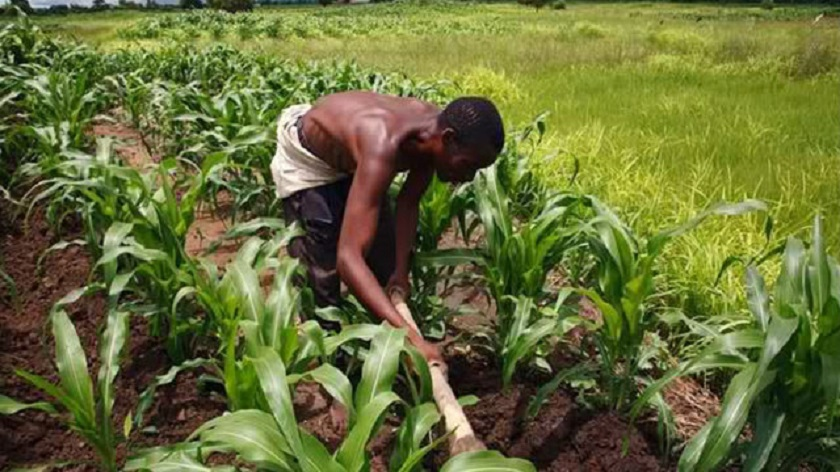 Agric Technology Hubs