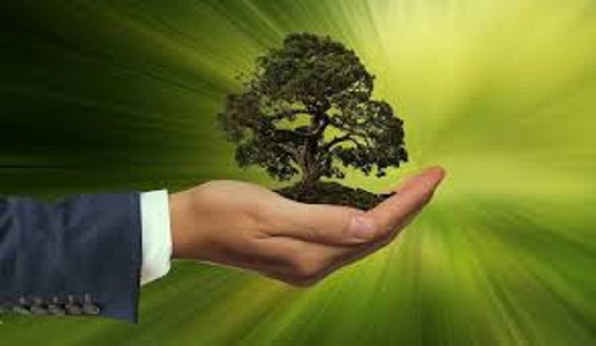 sustainability bonds green bonds