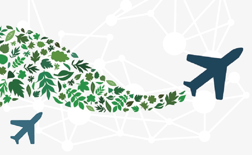 Sustainable Aviation Fuel Investment